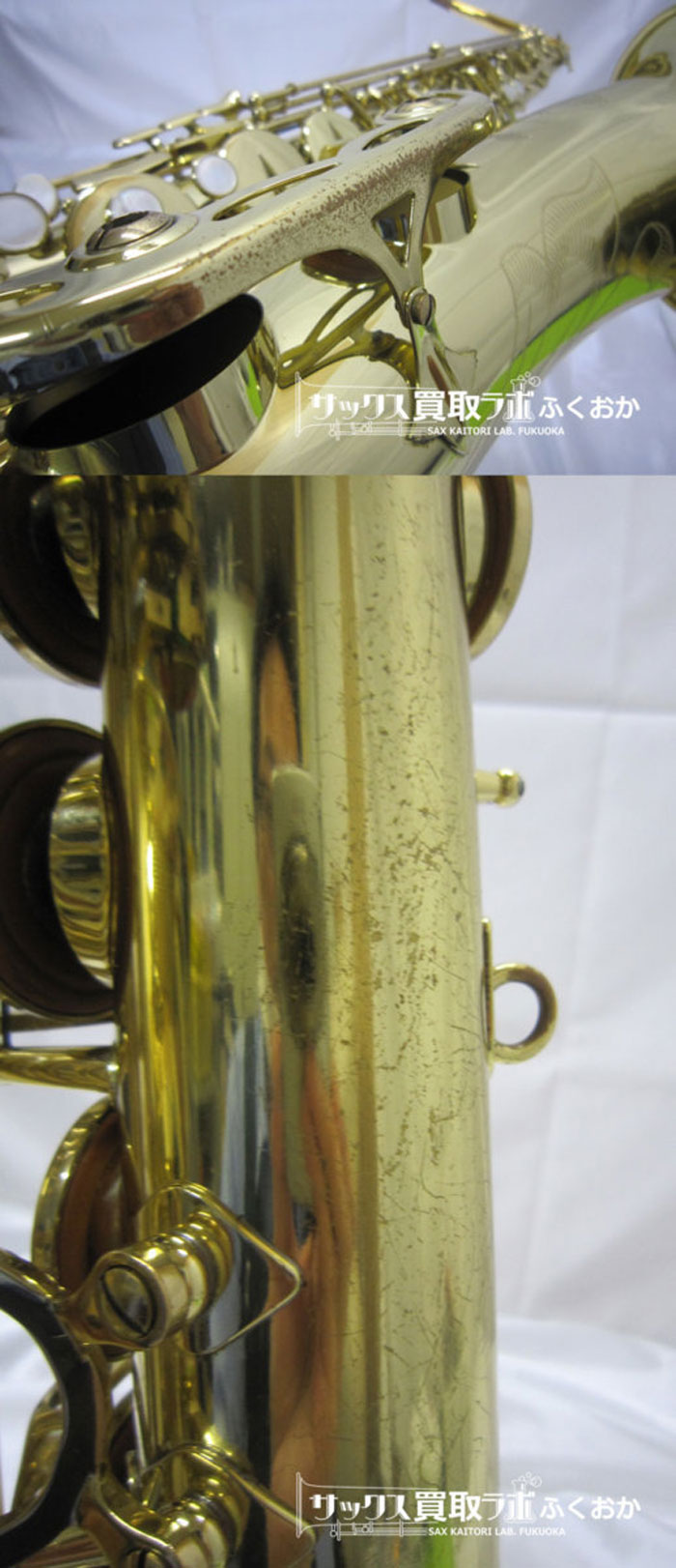 セルマー 中古テナーサックス シリーズ3 GPtone 金メッキネック 彫刻あり N634900の外観6